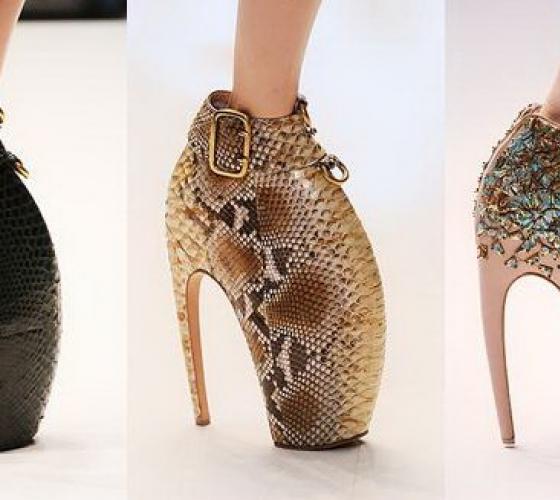 1ec134b04 Модные туфли на высоком каблуке и платформе: туфли на высокой шпильке  (фото). История каблуков и туфель